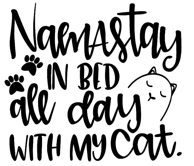 FUNDRAISER Cat Namastay in bed ($40)