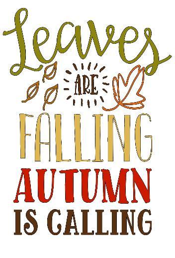 Leaves Falling ($35)