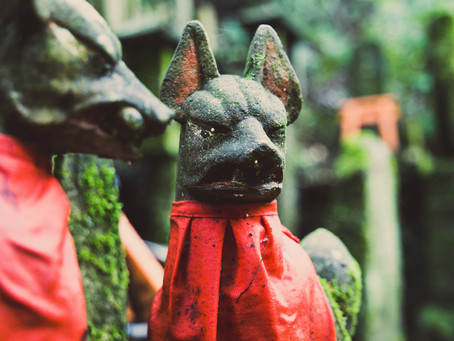 History of the Ancient Hairless Mexican Dog