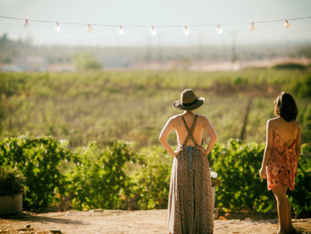 The Ensenada Wine Country Still Earns Praise