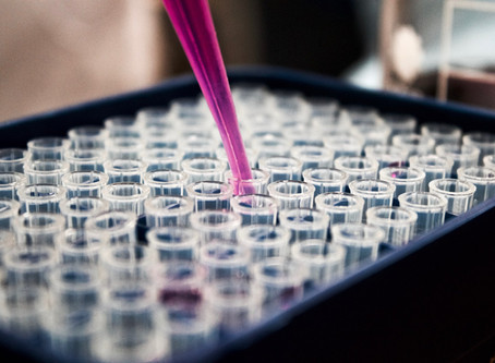 Lab Supplier With Local Mexico Plants Push Production For Virus Demand