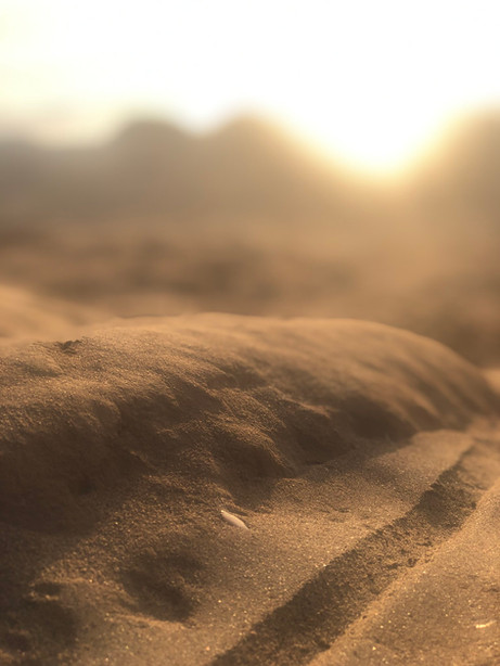 sand-dunes-baja.jpg
