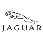 Jaguar-Trusts-in-Airius.png