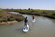 oléron stand up paddle découverte activités nautiques patrimoine faune flore