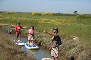 île d'oléron découverte des marais école location kayak
