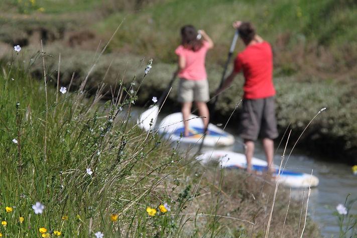 stand up paddle oléron activités nautiques découverte école balades kayak