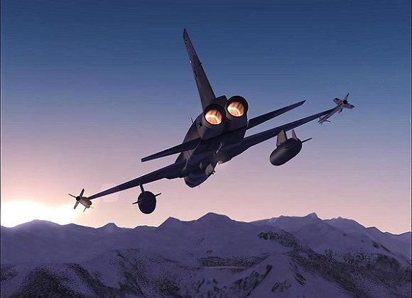 Freewing F-5 80mm Afterburner