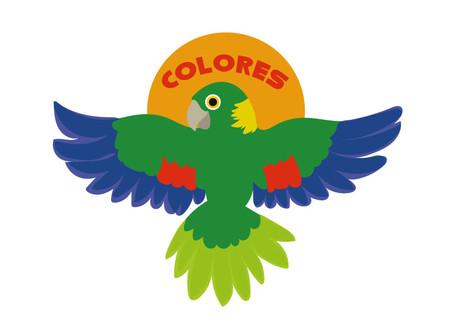 Rainbow Over Guatemala - Returning the Scarlet Macaw