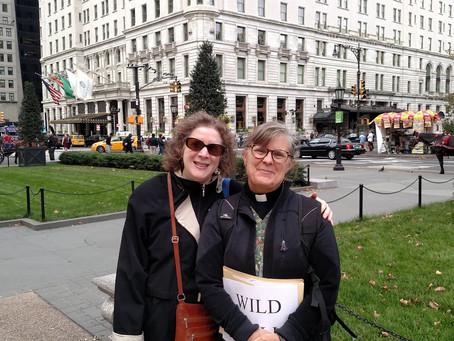 Wild Walk in New York
