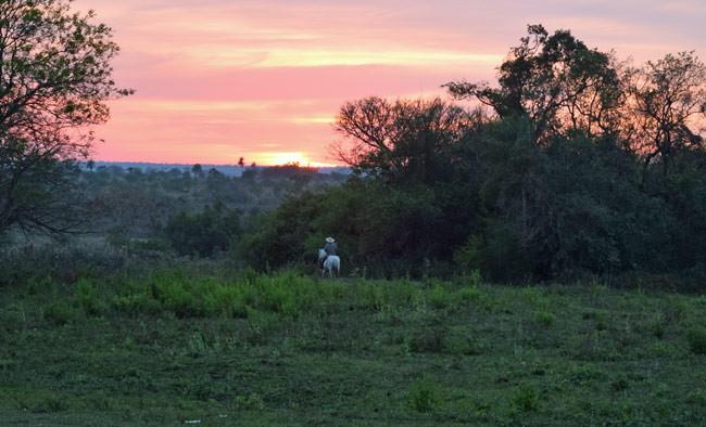 Sunrise at Retiro Alicia