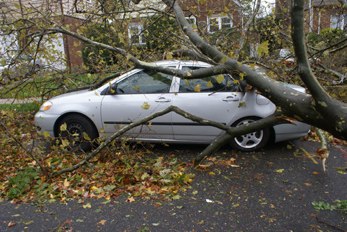 Author's car damaged by Superstorm Sandy