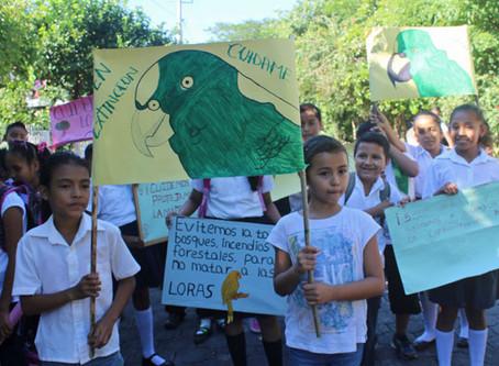 Ometepe: Island of Hope for Endangered Parrots