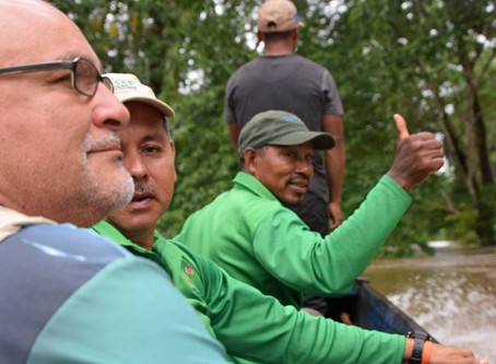 The Breath and Breadth of Forest and Parrot Protectors – La Miskito, Honduras