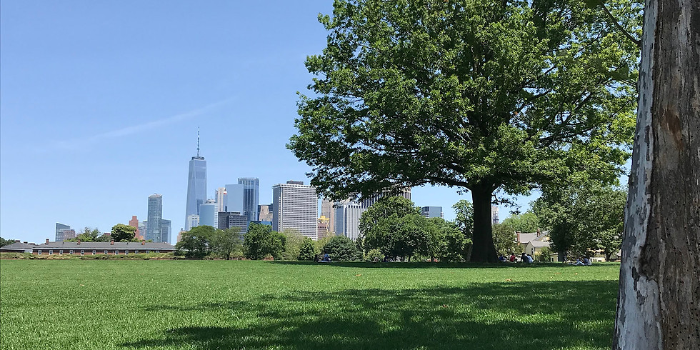 Wild Walk and More at Governor's Island