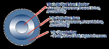 LSA Diagram.png