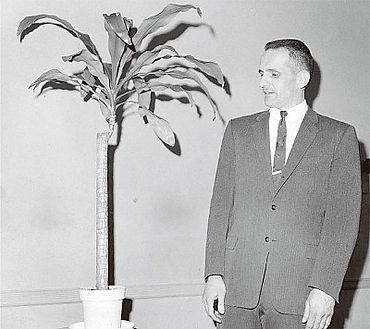 巴克斯特和當初作實驗的牛舌蘭
