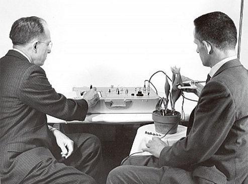 巴克斯特(右)與老黑格將植物接上電級。牛舌蘭花的實驗,重新改寫人們對植物感知的認識