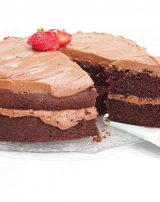 Chocolate Cake Slice.jpg