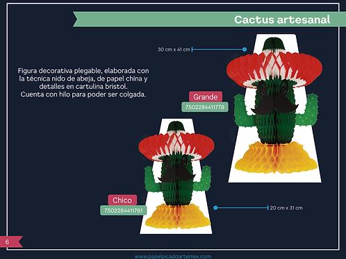 Cactus Artesanal