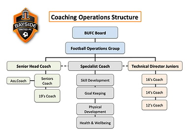 Coaching Structure2.png