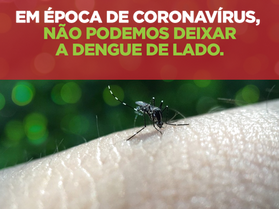 Coronavírus, gripe e dengue ao mesmo tempo, e agora?