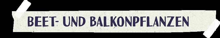 PdT_Sortiment_Beet-Balkon.png