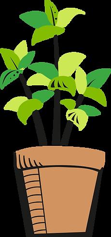 PdT_Gruenpflanze2.png
