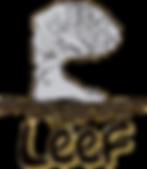 Leef Nu logo Transparant.png