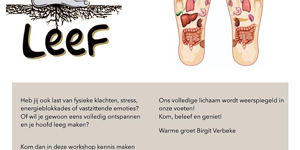 Vervolgworkshop voetreflexologie deel 2: UITGESTELD DOOR CORONA