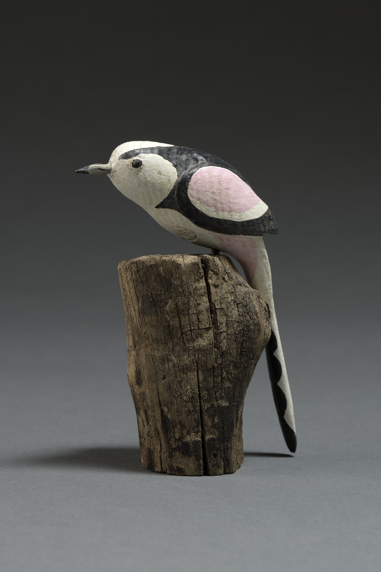 LONG TAILED TIT - CURRENTLY ON SHOW