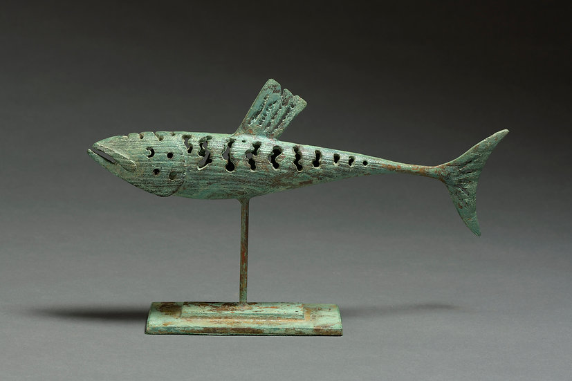 BRONZE MACKEREL