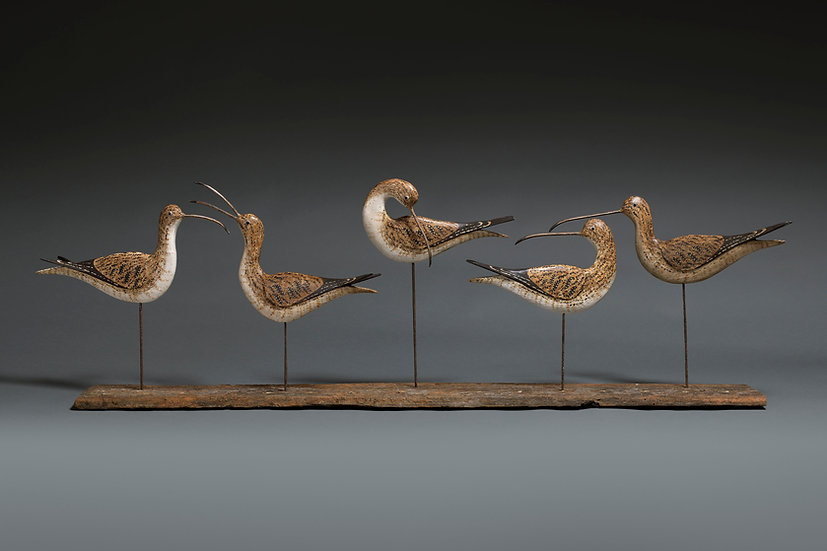 FIVE CURLEW SILHOUETTES ON DRIFTWOOD