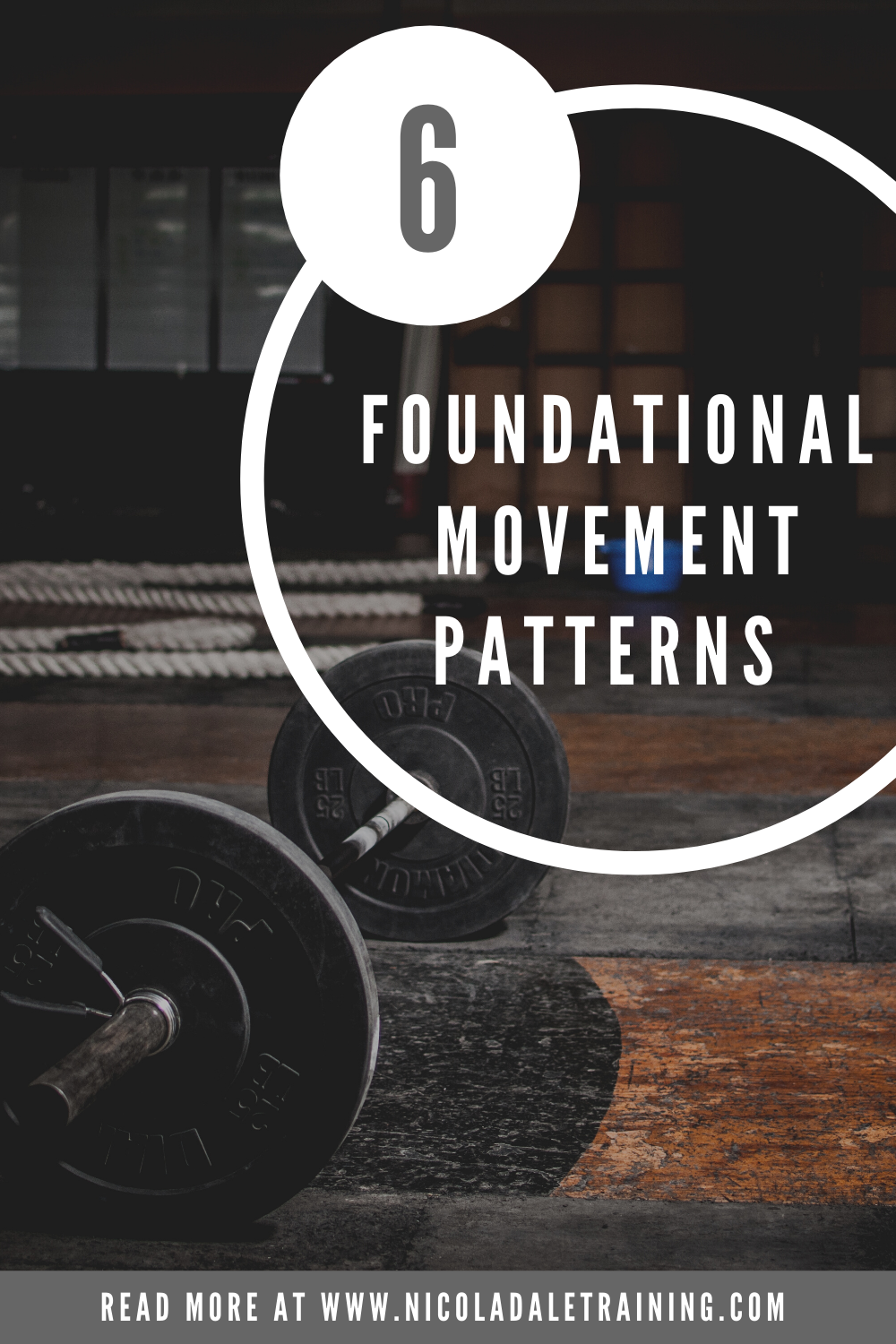 6 Foundation Movement Patterns and a Barbell