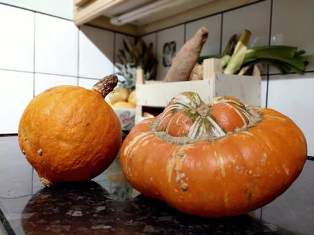 Squash hunger this autumn