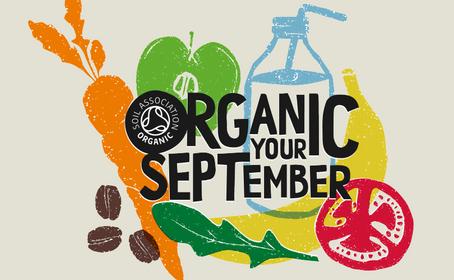 Organic Your September at Village Greens