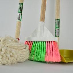 broom-1837434-300x300.jpg