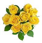 yellow-rose.png