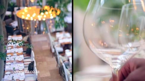 Vineyard Tastes of 2016