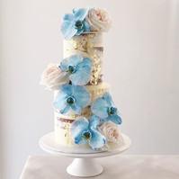 Vanilla on Vanilla with this blue beauty