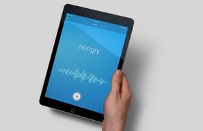 Voice user interface