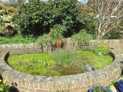 Fairlight pond- before