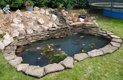Hastings goldfish pond