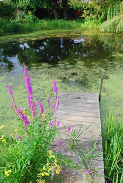 Stone Cross lake 2