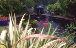 Seaford pond 2