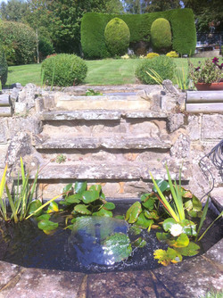 Bexhill lilly pool