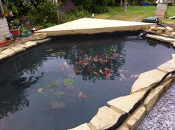 Pond re-build Pic 3