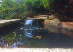 Smelliest pond ever!