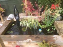 Hailsham raised pond