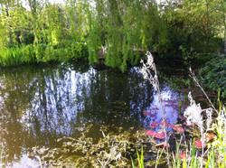 A swim-pond in Ringmer