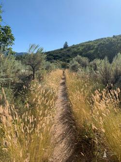 Boy Scout Trail   Glenwood Springs